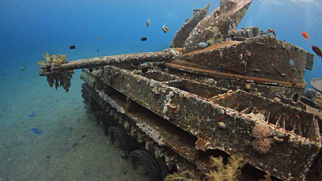 5 Wreck Dives You Will Remember Forever